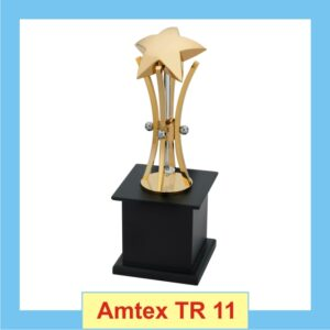 Star Trophy with Golden Body