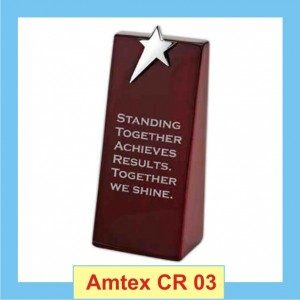 Solid Wooden Star Trophy